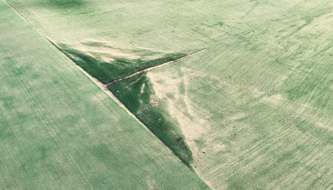 人工芝の損傷